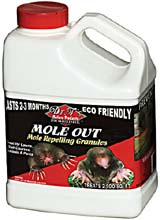 Mole and gopher lawn chemicals